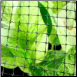 Bird Netting Structural
