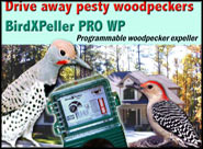 Woodpecker Pro Repeller