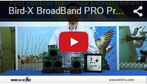 Video Broadband Pro